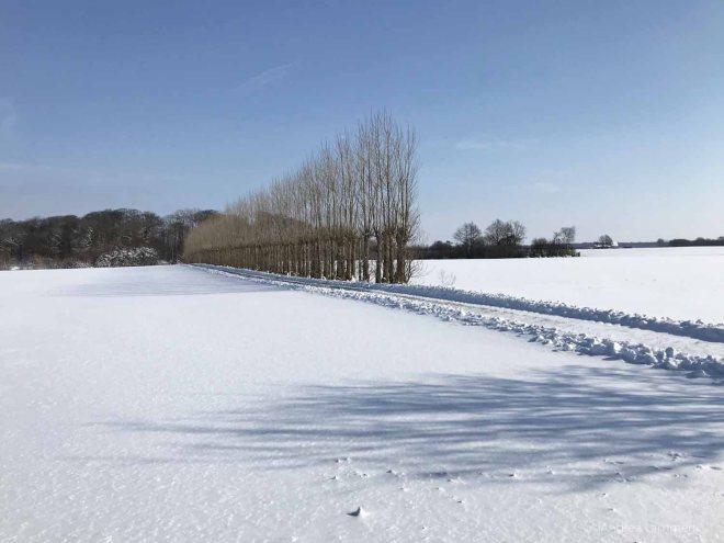 Dänemark, Lolland im Winter, Demeter-Bauernhof Knuthenlund