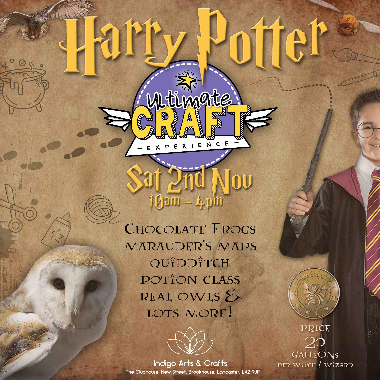 Harry Potter Ultimate Craft Experience Indigo Arts Crafts