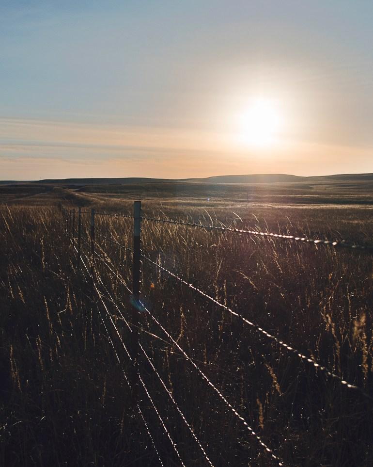 Tallgrass Sunset 4x5
