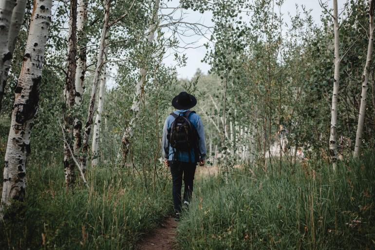 Adam Trail Aspens