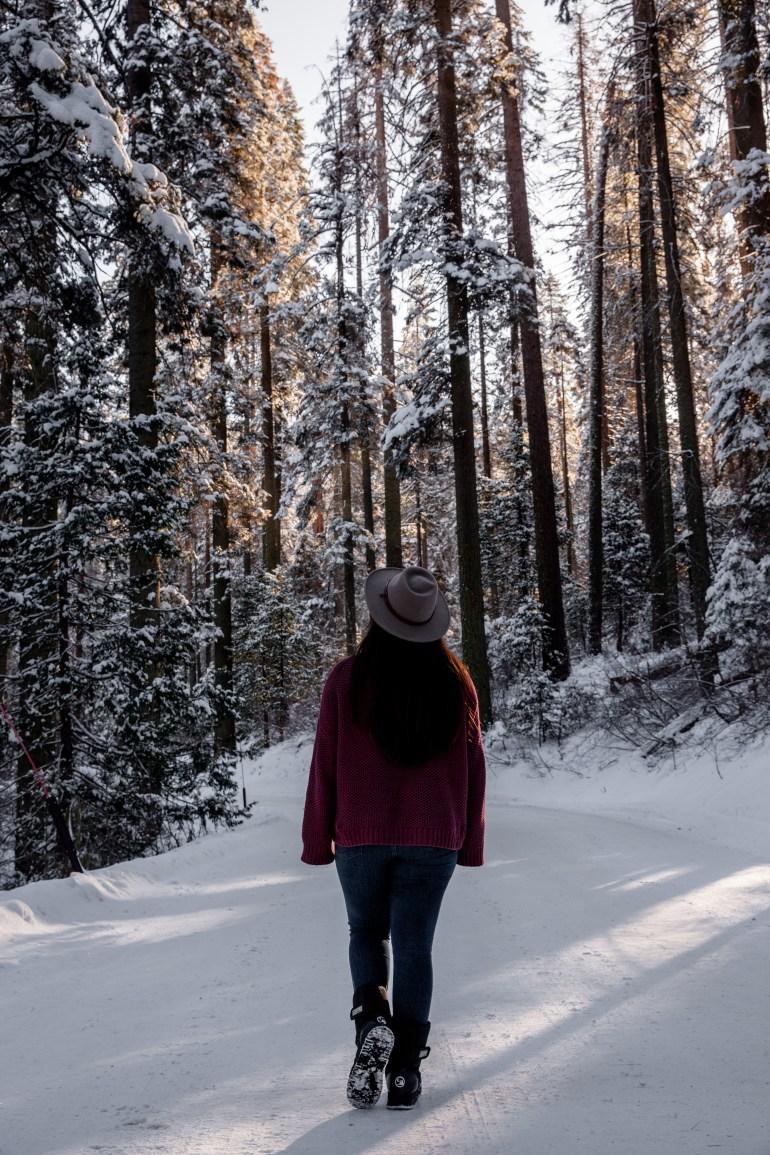 Sequoias-31
