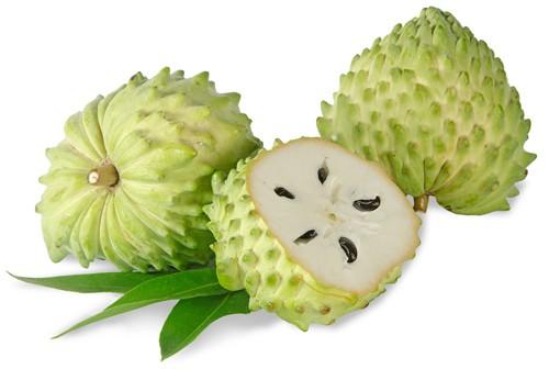 Graviola-fruto
