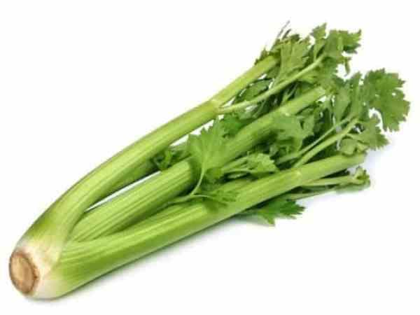 Fresh green celery wegetable on white background