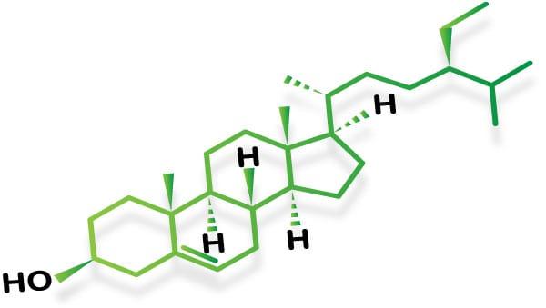 esteroles vegetales