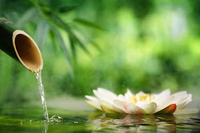 Spa still life with bamboo fountain and lotus
