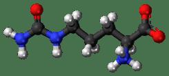 citrulina