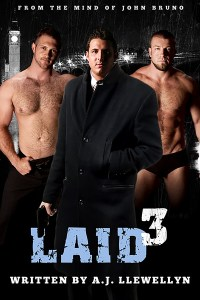 Laid3 Cover