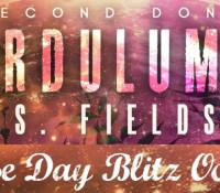 Release // Ardulum :  Second Don by J.S. Fields