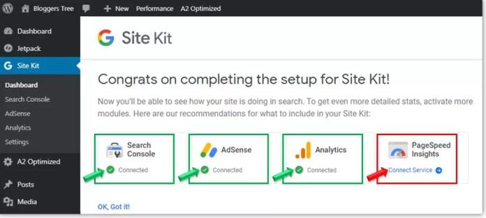 Google Site Kit Plugin Setup Process in WordPress Blog