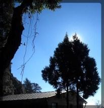 sun-behind-1b