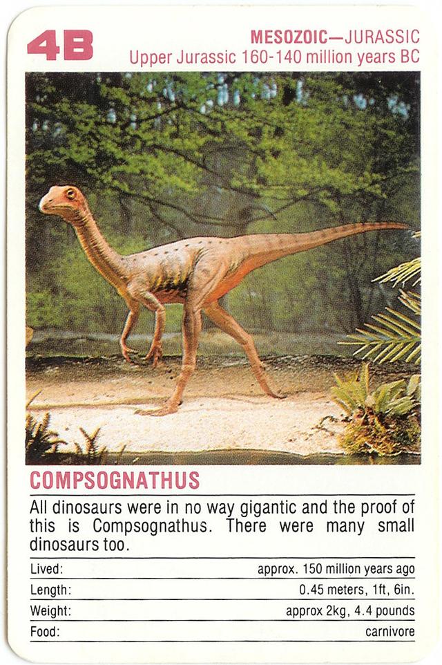 Compsognathus, by Orin Zebest, https://www.flickr.com/photos/orinrobertjohn/227005434