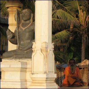 Sadhu Gokarnassa