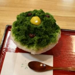 koishi_1