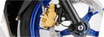 Gold Caliper & Petal Disk Brake