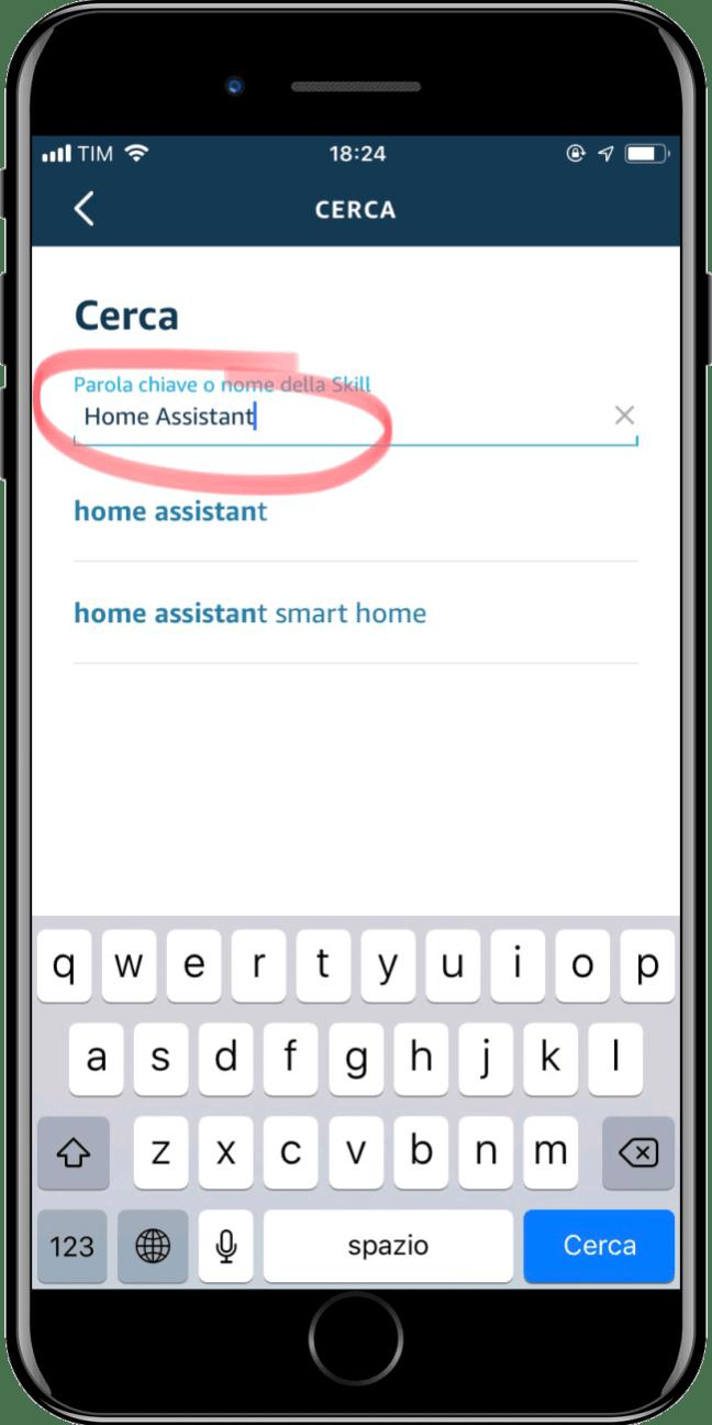 Home Assistant - Integration Amazon Alexa - 2