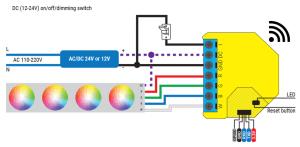 Shelly RGBW2 - schema di connessione - DC RGBW LED strip