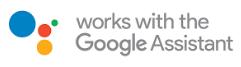 Compatibile con Google Assistant