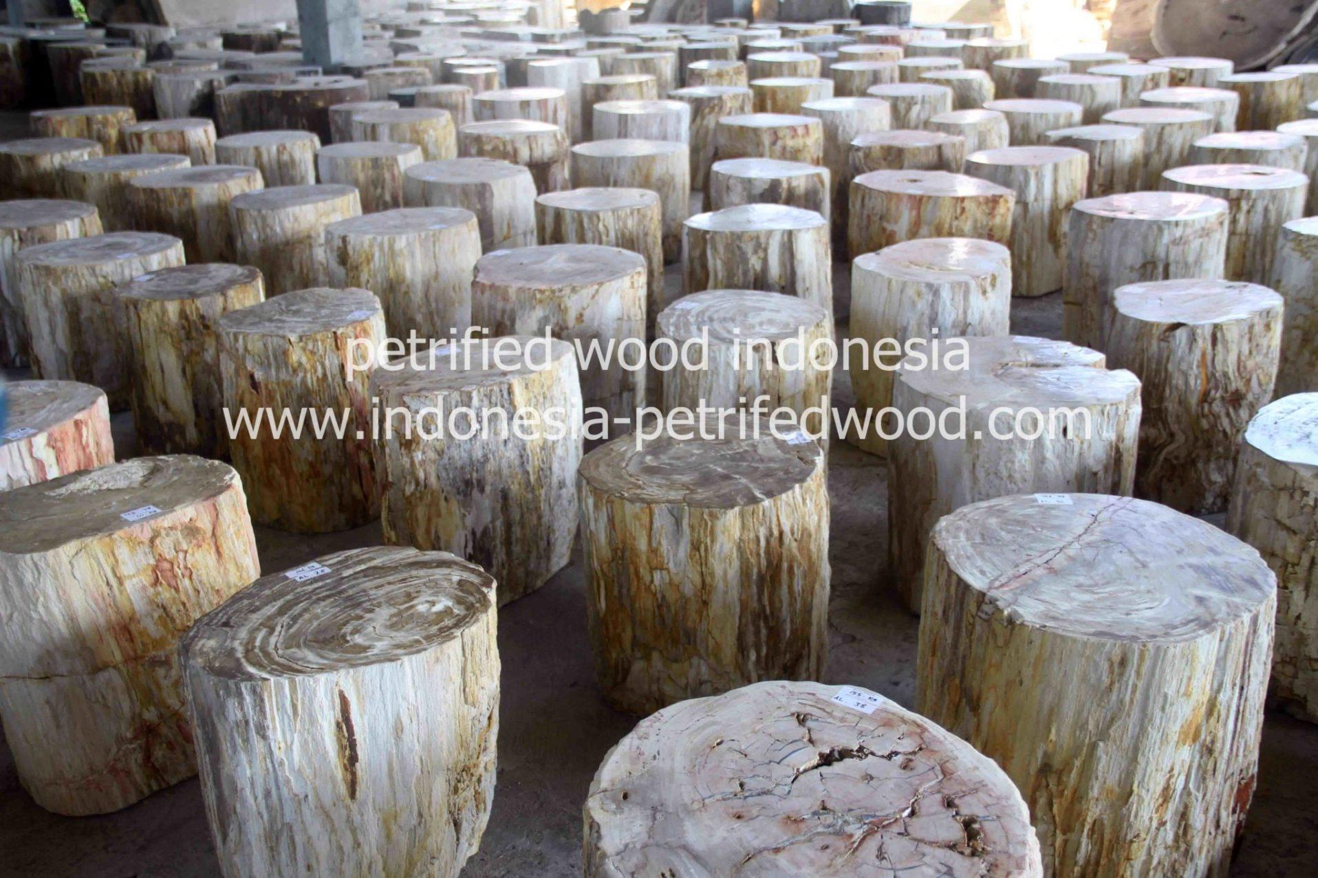 petrified wood indonesia factory