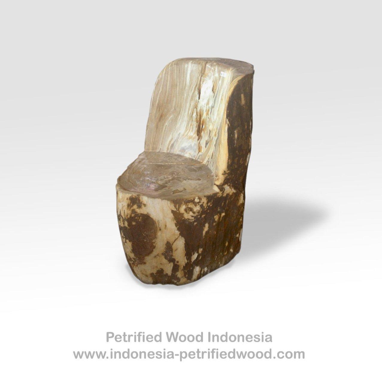 Petrified Wood Chair