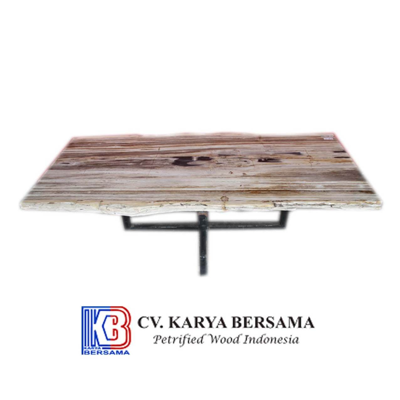 Petrified Wood Square Table