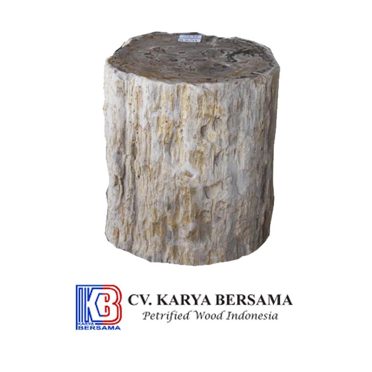 Petrified Wood Top Polish