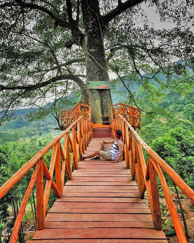 Wisata Leuwiliang Bogor : wisata, leuwiliang, bogor, Tempat, Wisata, Bogor, Paling, Instagramable, Boleh, Dilewatkan