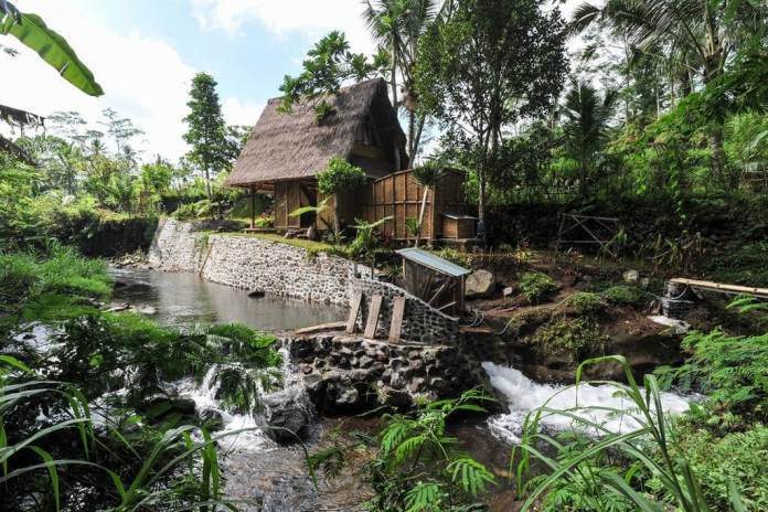 26 Rainforest Hotels In Bali Where You Can Bask In Lush Views And Stay Among Nature