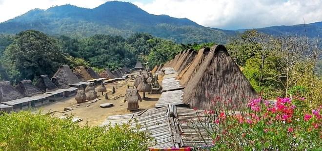 Flores villaggio-bena