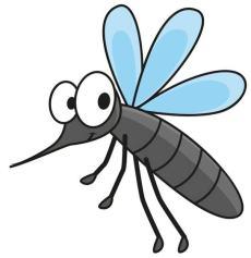 Indonesia zanzare dengue e malaria