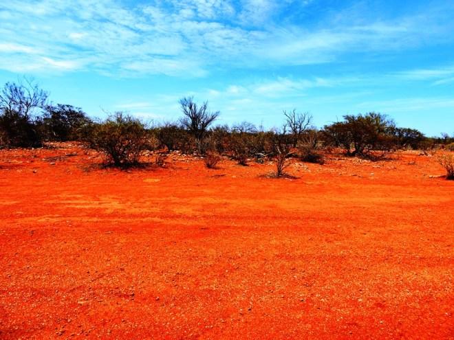 Australia terra rossa