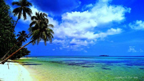 karimunjawa palme mare e meraviglie
