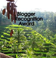 Blogger Recognition Award nomination