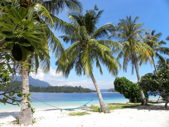 Raja Ampat spiaggia e palme