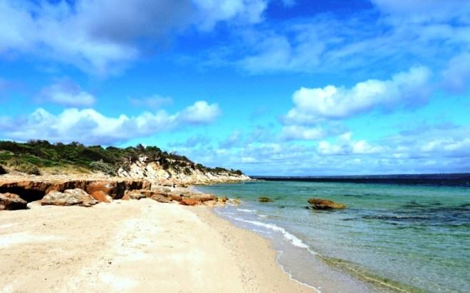 Kangaroo baudine beach