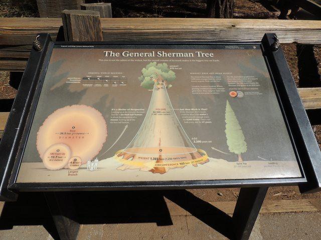 West Coast Sequoia NP - Generale Sherman