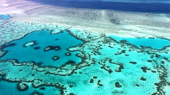 australia barriera corallina