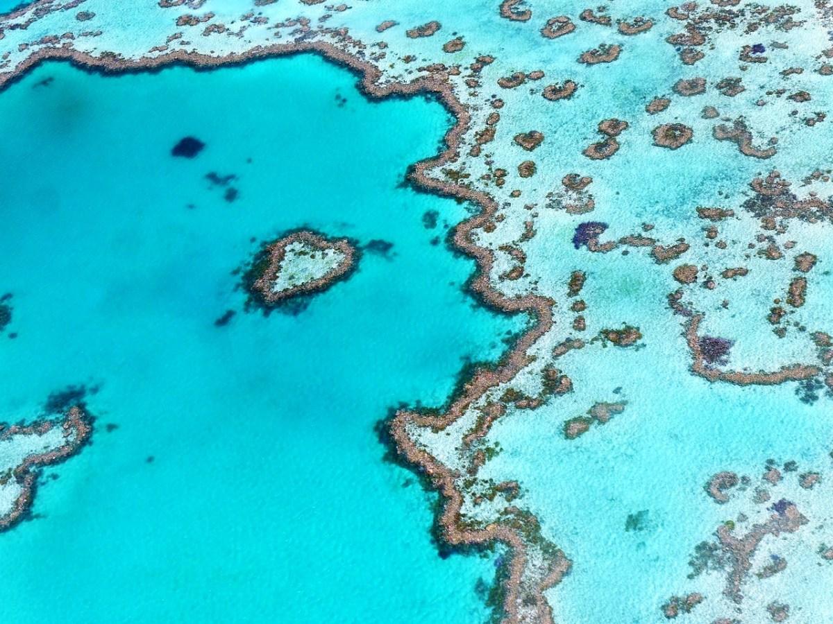 queensland grande barriera corallina