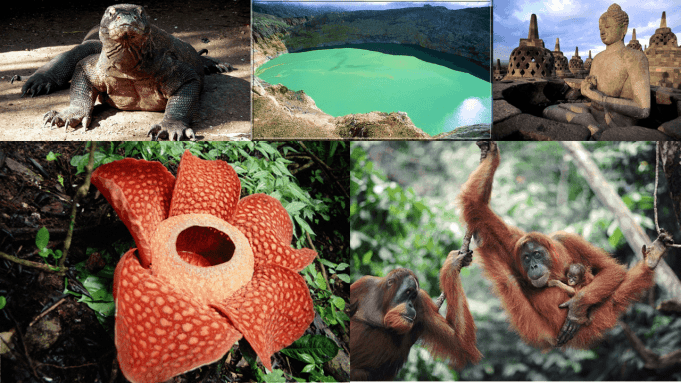 Indonesia Overview, Indonesia Travel Guide