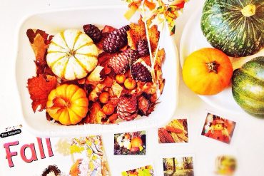 fall season sensory bin idea