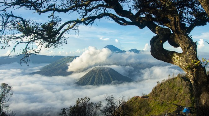 NAATI Certified Indonesian Translators Bromo Landscape