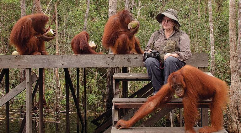 Birute Galdikas Camp Leakey Indonesia