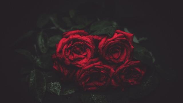 ば_薔薇9