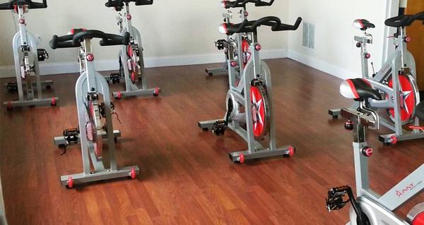does exercise bike burn fat