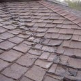 roof-damage-moreno-valley-mold-inspection-testing