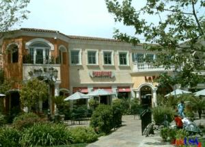 Calabasas-shopping-mold-inspections