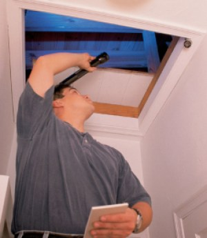 mold inspector looking in attic