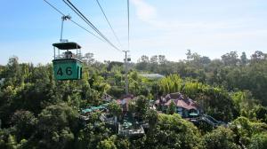 san-diego-zoo-view