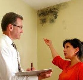 landlord tenant mold