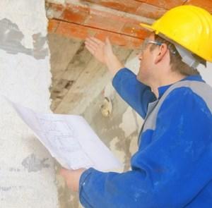 hawthorne-visual-mold-inspection