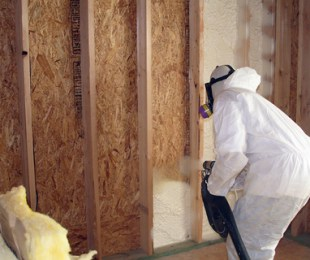 decontamination of mold removal process